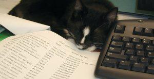 Register a veterinary business